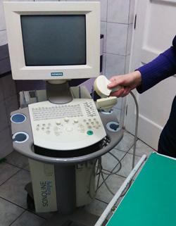 ultrazvuk-psa-i-mačke